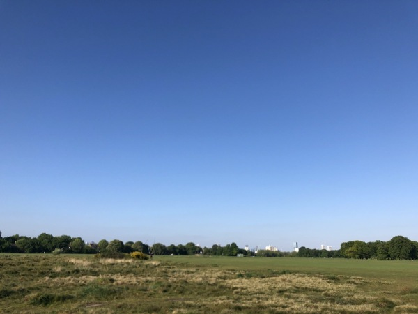 Blue skies over Wanstead Flats